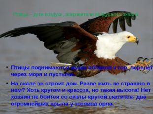 Птицы – дети воздуха, покровители воздушного океана. Птицы поднимаются выше о