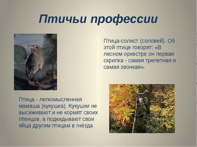 Птичьи профессии Птица - легкомысленная мамаша (кукушка). Кукушки не высижива...