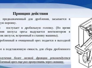 Принцип действия Орех, предназначенный для дробления, засыпается в приемную в