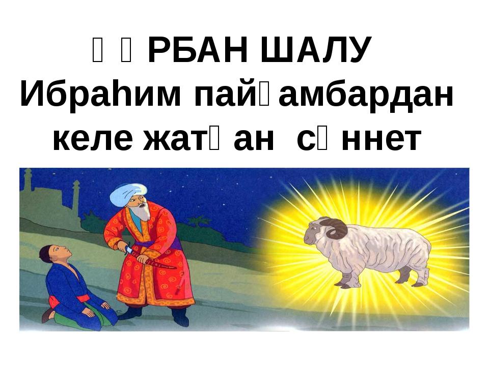 ҚҰРБАН ШАЛУ Ибраhим пайғамбардан келе жатқан сүннет