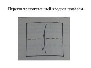 Перегните полученный квадрат пополам