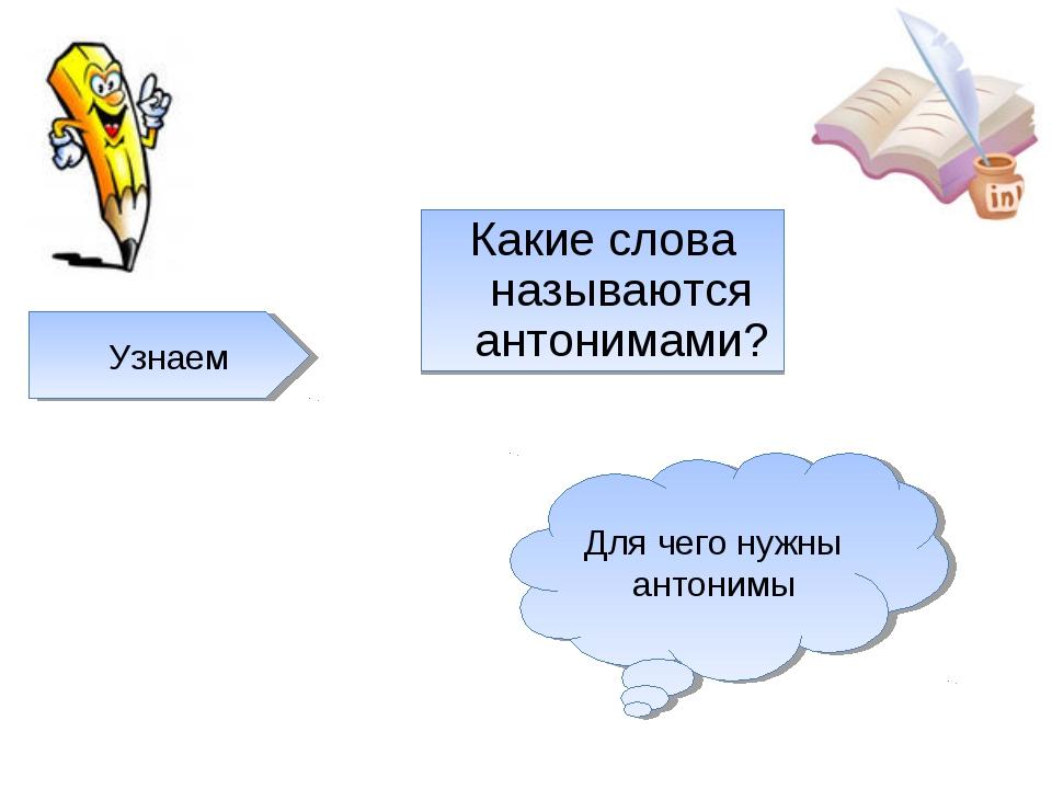 Какие слова называются антонимами? Узнаем Для чего нужны антонимы