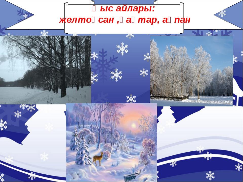 Қыс айлары: желтоқсан ,қаңтар, ақпан