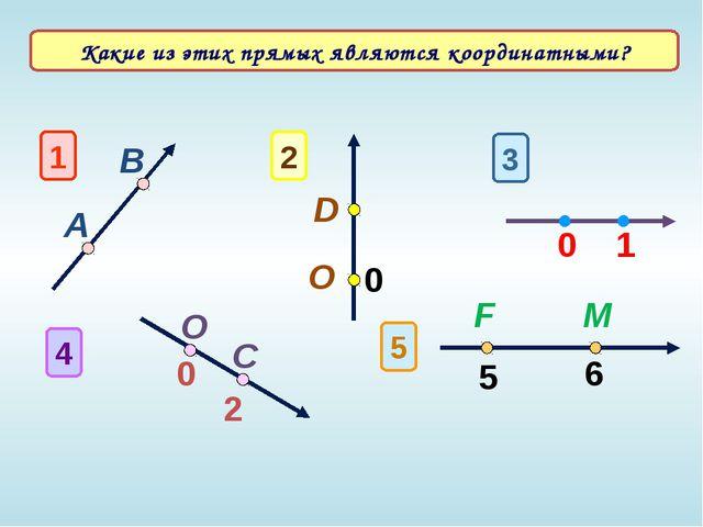 1 А В 3 1 0 O 4 0 C 2 2 D O 0 5 5 6 F M Какие из этих прямых являются коорди...