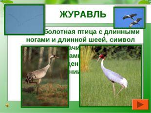 ЖУРАВЛЬ Большая болотная птица с длинными ногами и длинной шеей, символ надеж