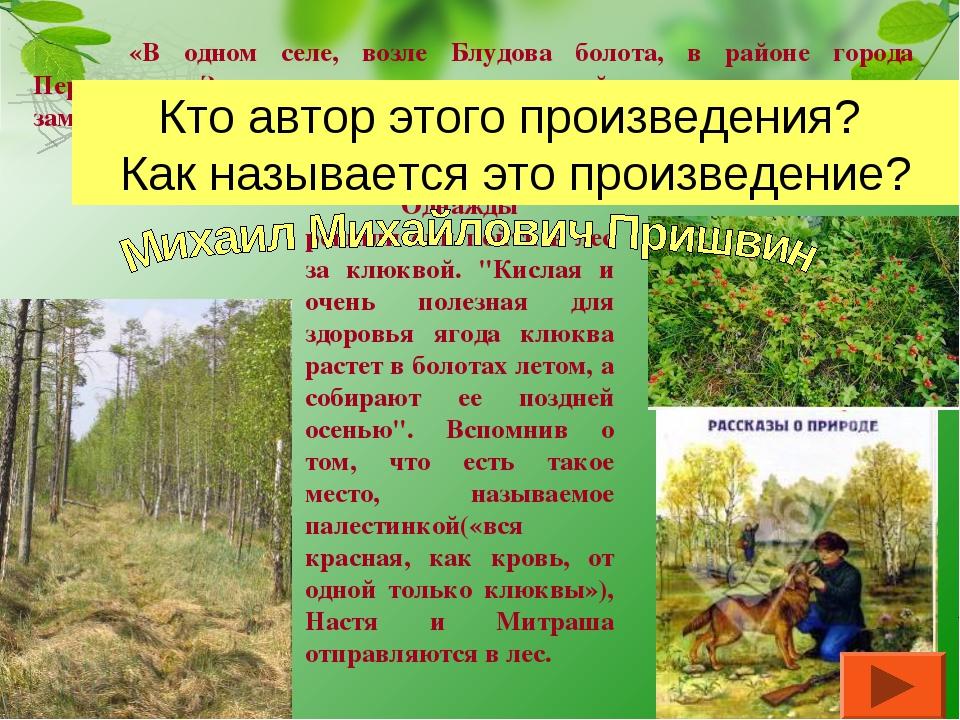 """Однажды решили они пойти в лес за клюквой. """"Кислая и очень полезная для здор..."""
