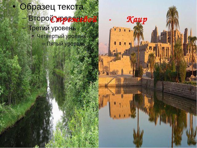 Стрежевой - Каир