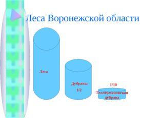 Леса Воронежской области Леса Дубравы 1/2 Теллермановская дубрава 1/10