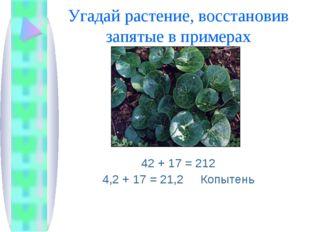 Угадай растение, восстановив запятые в примерах 42 + 17 = 212 4,2 + 17 = 21,2