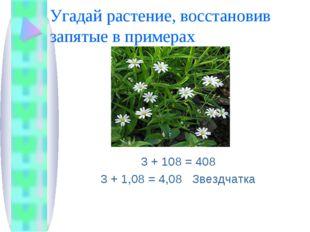 Угадай растение, восстановив запятые в примерах 3 + 108 = 408 3 + 1,08 = 4,08