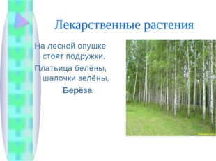 Лекарственные растения На лесной опушке стоят подружки. Платьица белёны, шапо