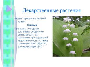 Лекарственные растения Белые горошки на зелёной ножке. Ландыш Препараты ланды