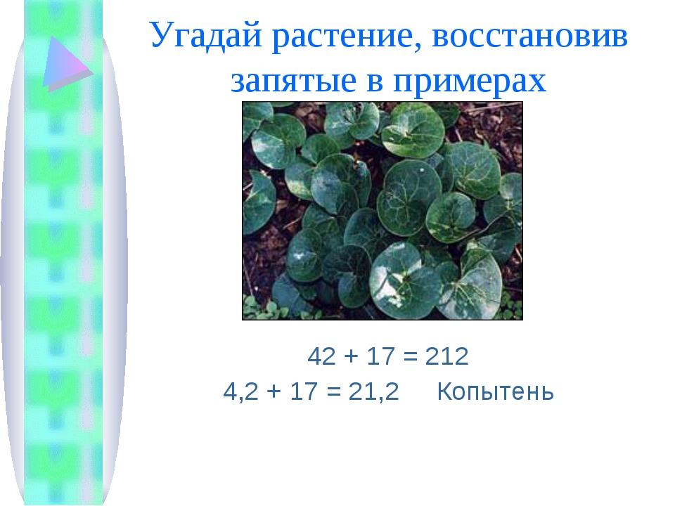 Угадай растение, восстановив запятые в примерах 42 + 17 = 212 4,2 + 17 = 21,2...