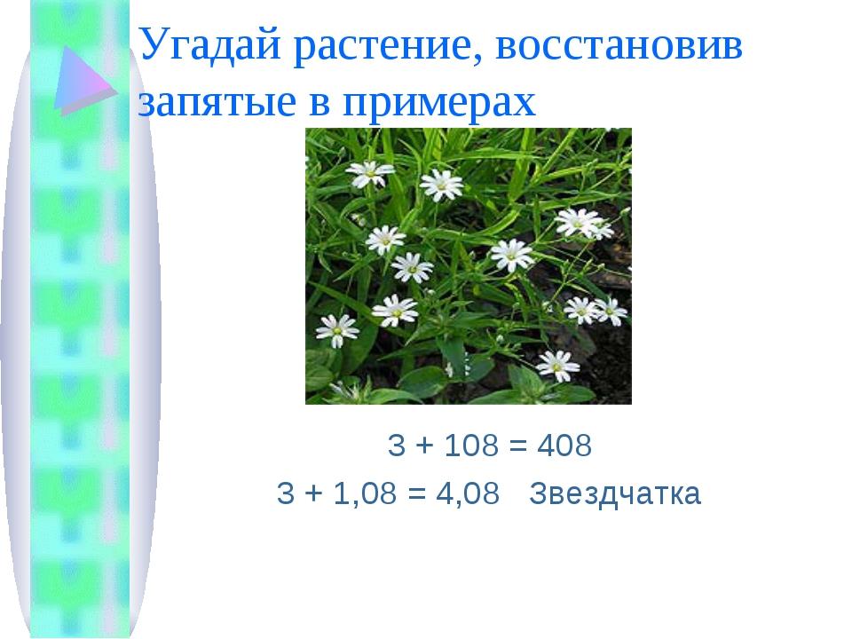 Угадай растение, восстановив запятые в примерах 3 + 108 = 408 3 + 1,08 = 4,08...