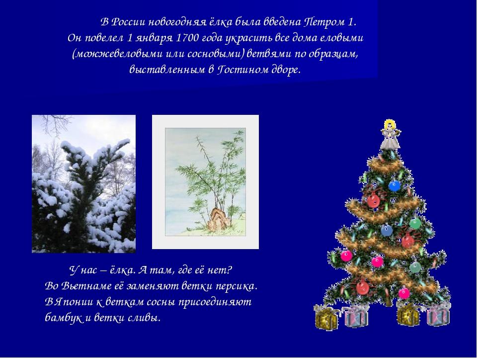 В России новогодняя ёлка была введена Петром 1. Он повелел 1 января 1700 год...