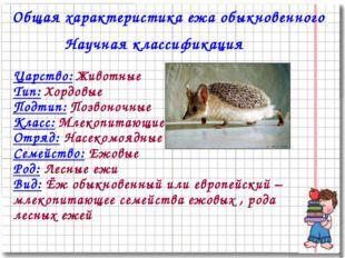 Общая характеристика ежа обыкновенного Научная классификация Царство: Животны