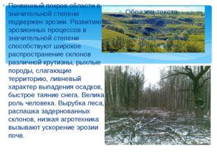 Почвенный покров области в значительной степени подвержен эрозии. Развитию э