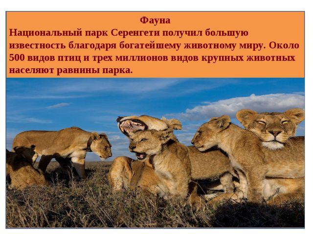 Фауна Национальный парк Серенгети получил большую известность благодаря богат...