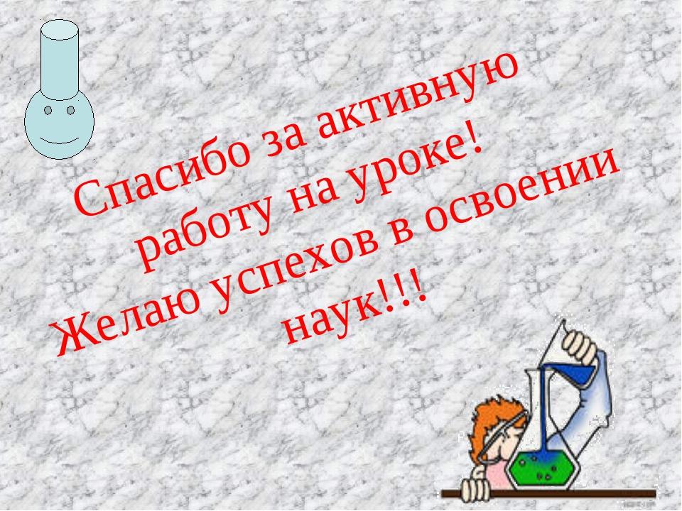 Спасибо за активную работу на уроке! Желаю успехов в освоении наук!!!