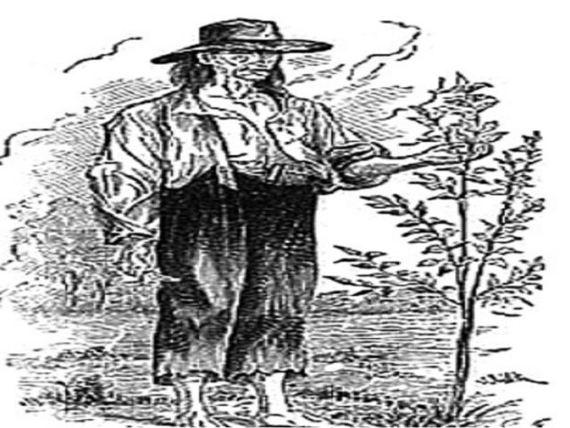 Дэви Крокет- офицер, путешественник и конгрессмен Джонни Яблочное зёрнышко-Дж...