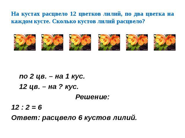 На кустах расцвело 12 цветков лилий, по два цветка на каждом кусте. Сколько к...