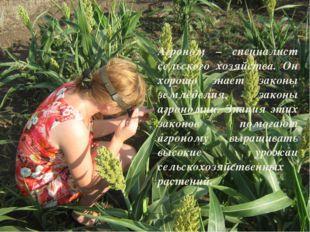 Агроном – специалист сельского хозяйства. Он хорошо знает законы земледелия,