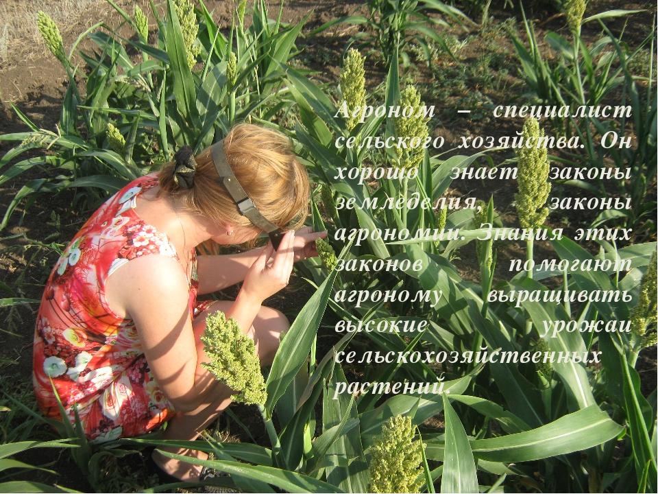 Агроном – специалист сельского хозяйства. Он хорошо знает законы земледелия,...