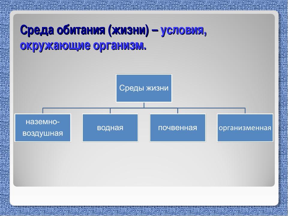 Среда обитания (жизни) – условия, окружающие организм.