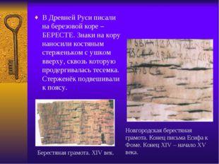 В Древней Руси писали на березовой коре – БЕРЕСТЕ. Знаки на кору наносили кос