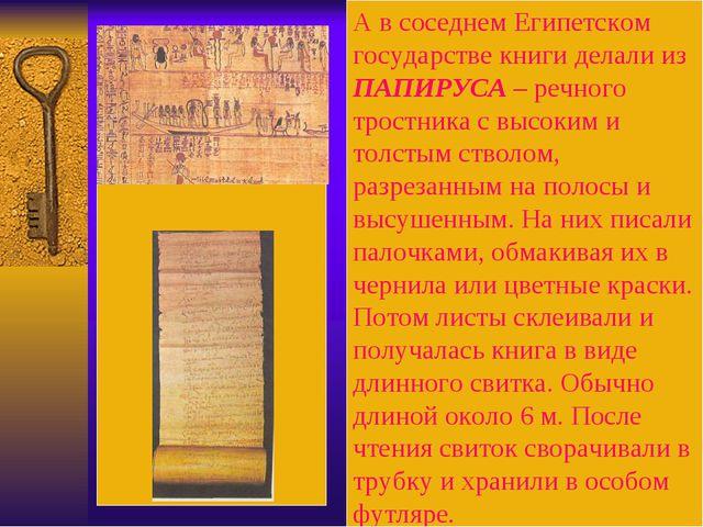 А в соседнем Египетском государстве книги делали из ПАПИРУСА – речного трост...