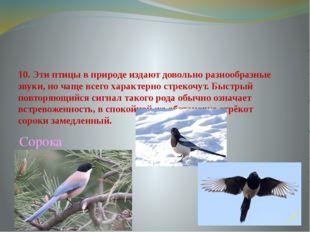 10. Эти птицы в природе издают довольно разнообразные звуки, но чаще всего ха