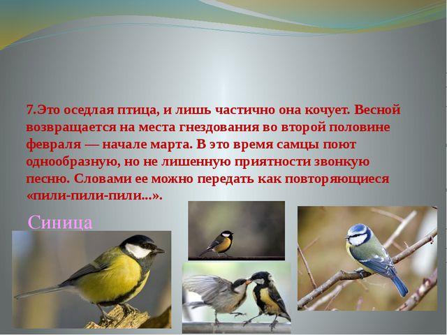 7.Это оседлая птица, и лишь частично она кочует. Весной возвращается на места...