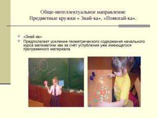 Обще-интеллектуальное направление Предметные кружки « Знай-ка», «Помогай-ка».