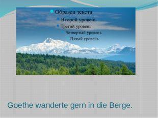Goethe wanderte gern in die Berge.