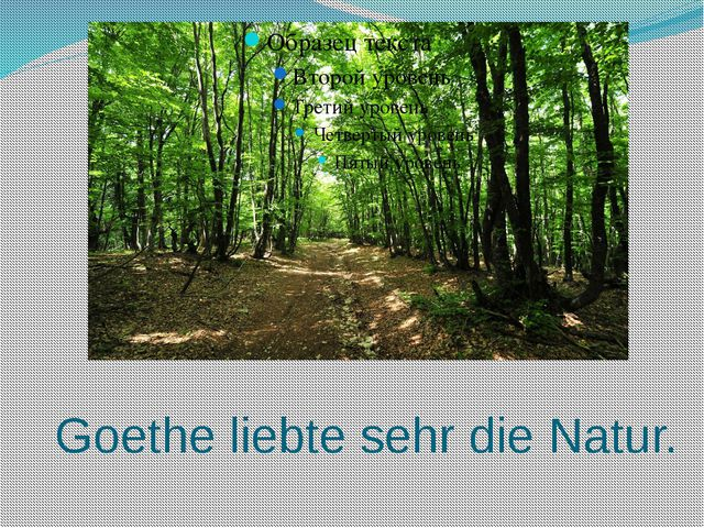 Goethe liebte sehr die Natur.