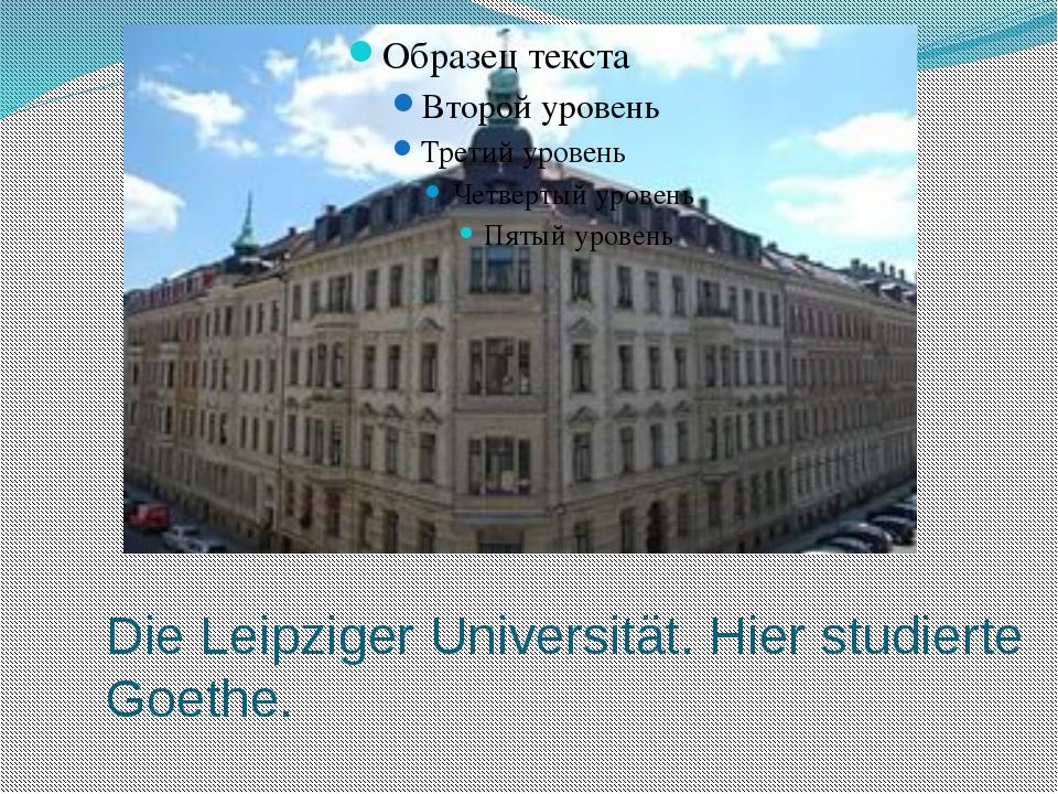 Die Leipziger Universität. Hier studierte Goethe.