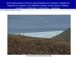 Зона арктических пустынь расположена на островах Северного Ледовитого океана