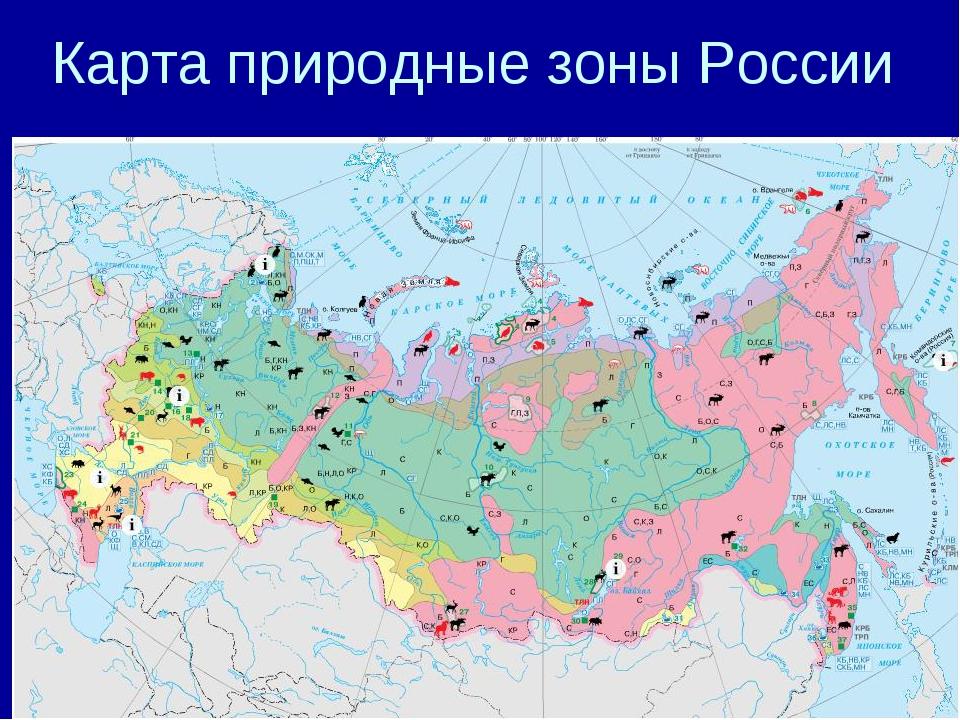 Карта природные зоны России