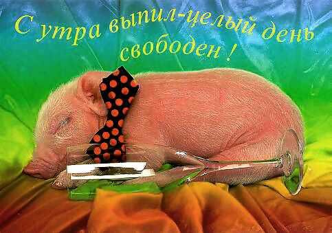 http://festival.1september.ru/articles/417349/Image522.jpg