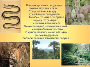 В ветвях деревьев гнездились, шумели, порхали и пели Птицы лесные, и всюду..