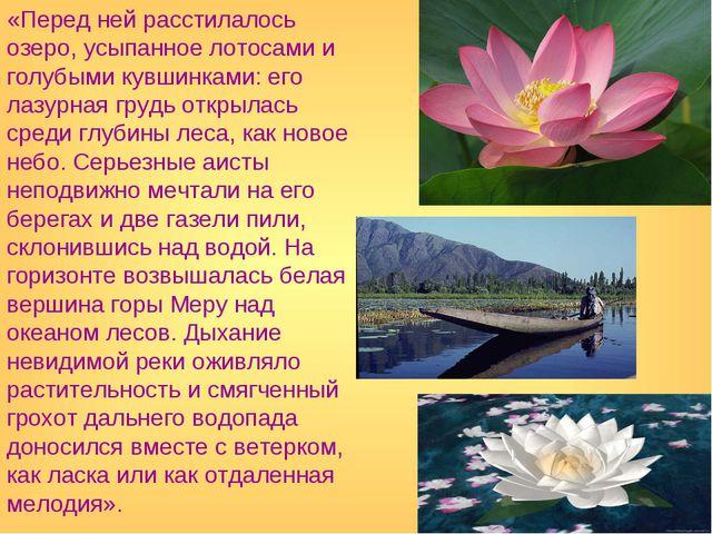 «Перед ней расстилалось озеро, усыпанное лотосами и голубыми кувшинками: его...