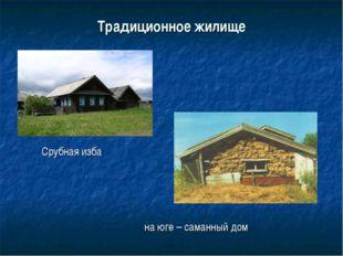 Традиционное жилище Срубная изба на юге – саманный дом