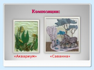 Композиции: «Аквариум» «Саванна»