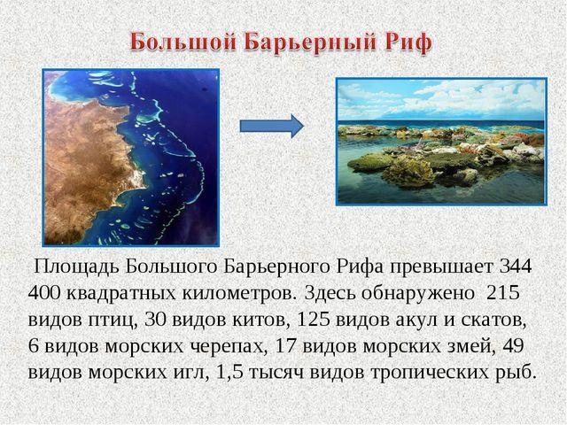 Площадь Большого Барьерного Рифа превышает 344 400 квадратных километров. Зд...