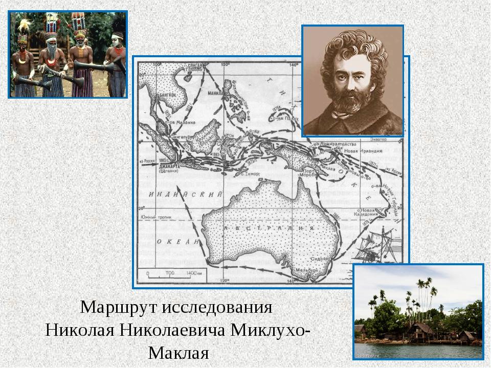 Маршрут исследования Николая Николаевича Миклухо- Маклая