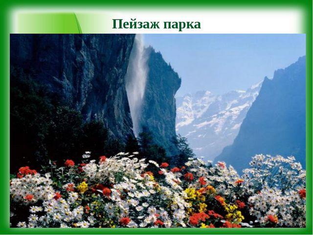 Пейзаж парка