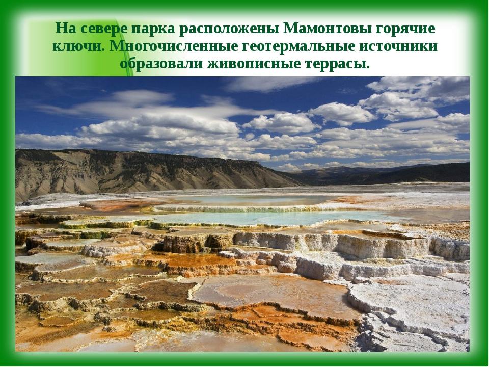 На севере парка расположены Мамонтовы горячие ключи. Многочисленные геотермал...