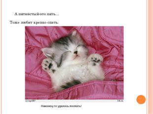А пятнистый-это пять… Тоже любит крепко спать. Наконец-то удалось поспать!