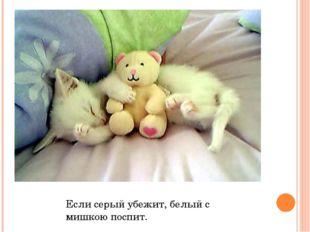 Если серый убежит, белый с мишкою поспит.