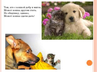 Тем, кто с кошкой добр и мягок, Может кошка другом стать. Но обидчику, однако
